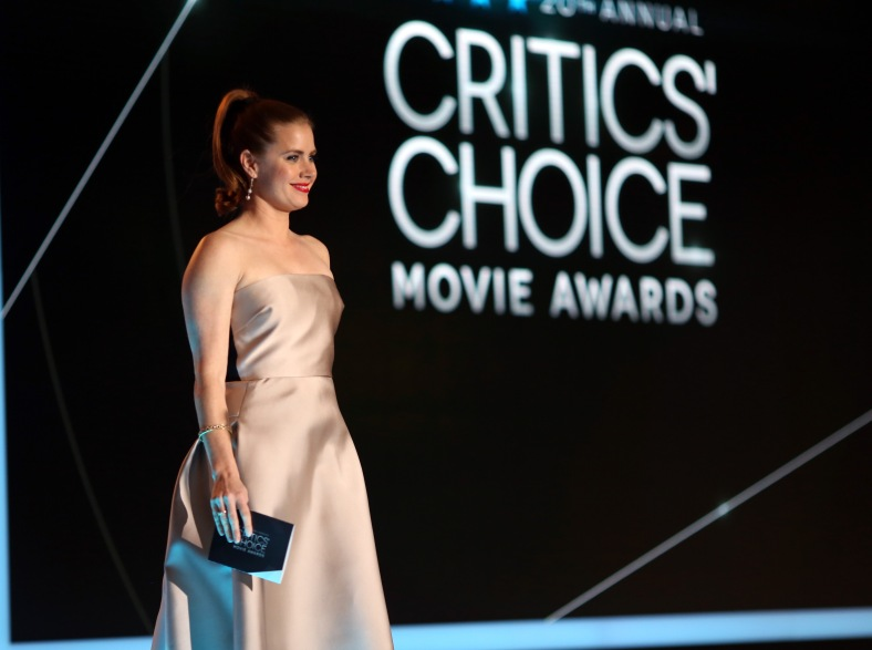 20th Annual Critics' Choice Movie Awards - Show